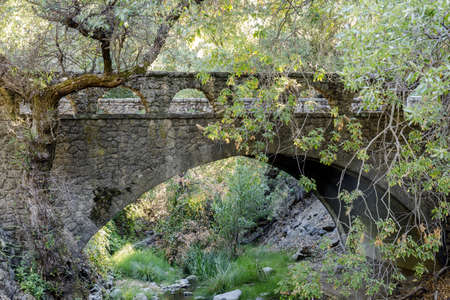 Historic Pedestrian Bridge over Penitencia Creek at Alum Rock Park. San Jose, Santa Clara County, California, USA.
