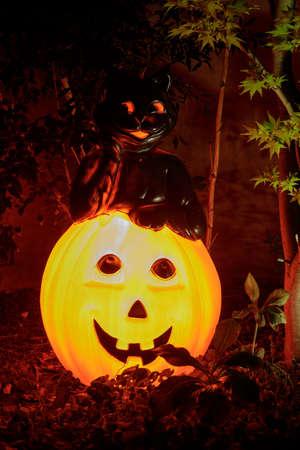 Black Cat Leaning on Jack O Lantern Glowing in the Dark Фото со стока