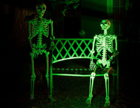 Skeletons and crows hanging out outside a house in Halloween festivity
