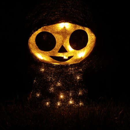 Light Up Figure Glow in the Dark Фото со стока