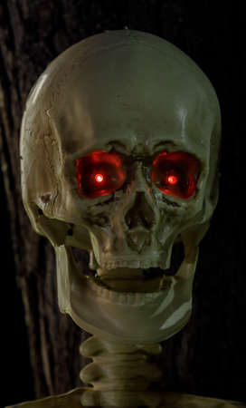 Skull with Red Glowing Eyes Halloween Light-Up Decorations