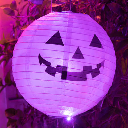 Halloween Paper Lantern Light-up Decorations