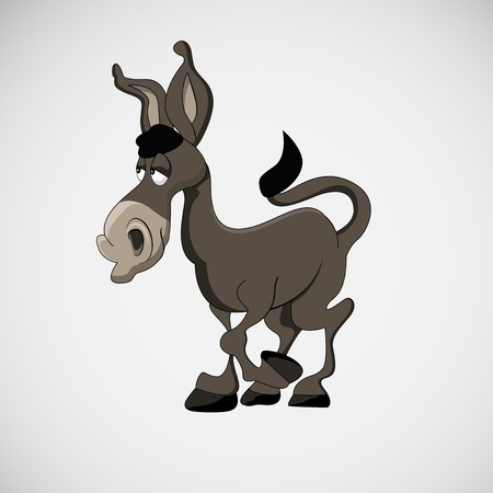 animal idiot: burro