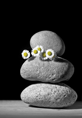 staunch: Flower and Stone Stock Photo
