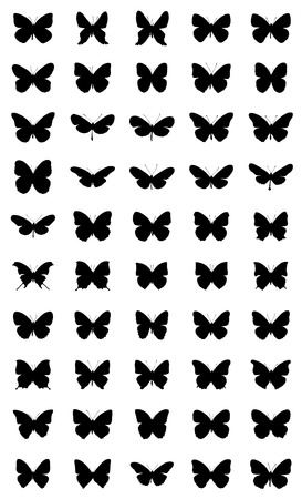 50 different silhouettes of butterflies. Vector