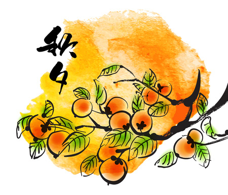 Vector Ink Painting of Persimmons for Korean Chuseok  Mid Autumn Festival , Thanks Giving Day, Harvest Holiday  Translation of Korean Text  Chuseok  Mid Autumn  Çizim
