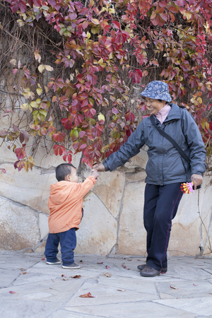 60 65 years: Happy grandmother and grandson playing in front of Boston Ivy, shot in Beijing, China