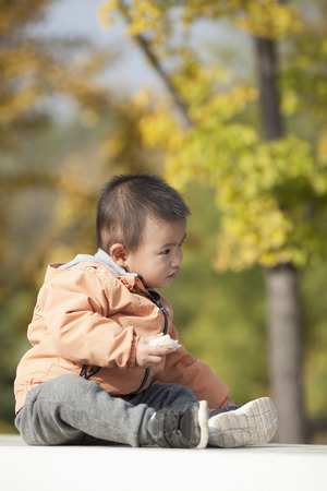 Cute Chinese baby boy playing in front of ginkgo trees, shot in Beijing, China