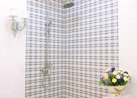 bathroom interior: Bathroom interior Editorial