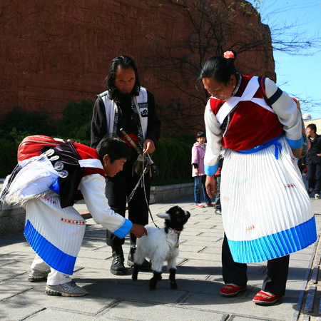 two women and one man: Man and women looking and petting a baby lamb