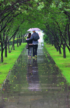 drizzling rain: A couple walking through a tree tunnel Stock Photo