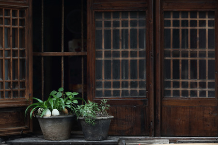traditional plants: Potted plants outside a traditional wooden window