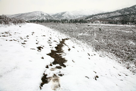 polar climate: Snowy landscape of forest and mountains Stock Photo