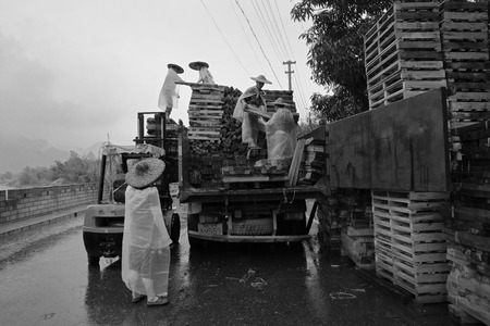 scaffolds: Workers loading wood scaffolds onto the truck in the rain