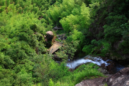 pathways: View of waterfalls and pathways from high angle