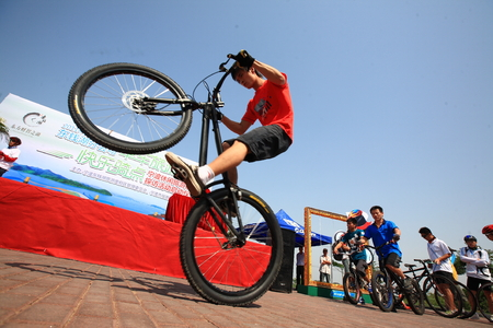 stunt: A man performing a bicycle stunt