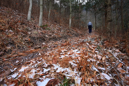 snows: Path covered by leaves and snows in mountain Stock Photo