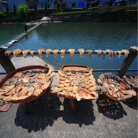 shoots: Drying sliced bamboo shoots