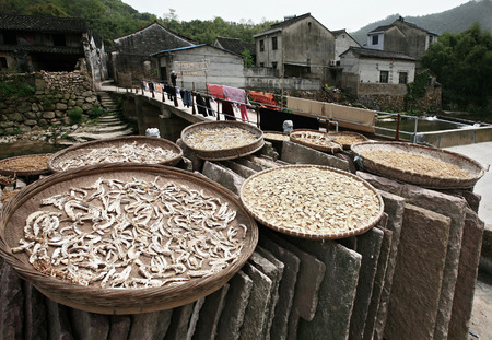 drying: Foods drying under the sun