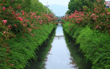 teng: A bridge across the river
