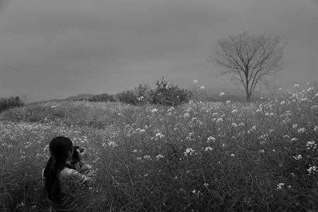 bare waist: Woman taking photograph in the field