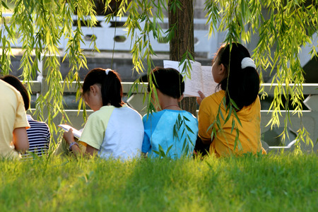 leisure wear: Young children reading under a tree