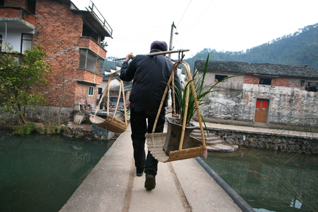 villager: Villager carrying across the bridge