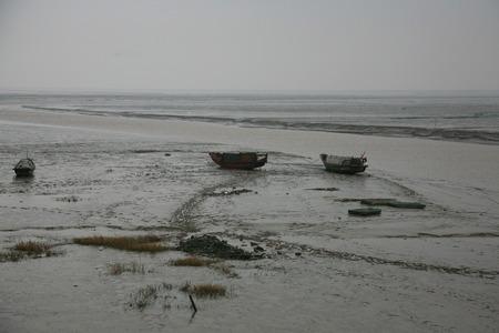 wetland: Boats on the tidal flats of Hangzhou bay wetland