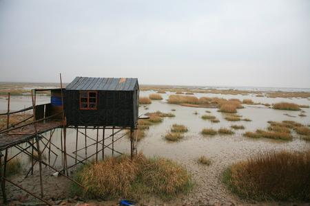 stilt house: A stilt house on wetland