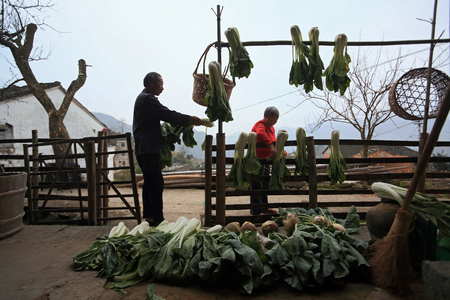 drying: Villagers drying vegetables
