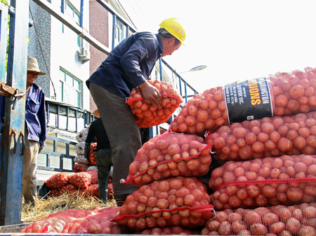 only three people: Farmer carrying a sack of potato Editorial