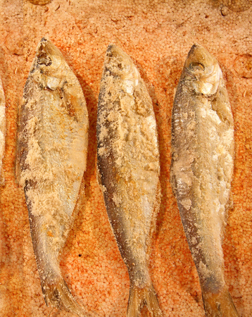 salted: Salted fishes Stock Photo