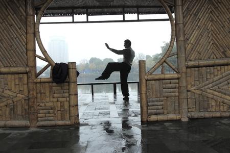 practising: A man practising Tai chi