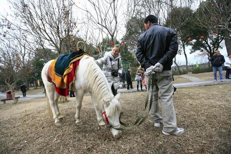 pony girl: Caucasian girl patting a pony