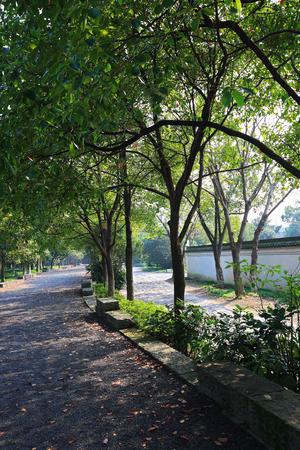 pathways: Pathways in a garden Stock Photo