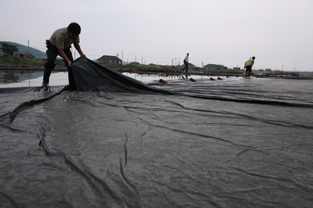 only three people: Men setting up the salt evaporation pond Editorial