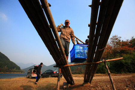 only three people: Fishermen carrying fish container over the bamboo walkway Editorial