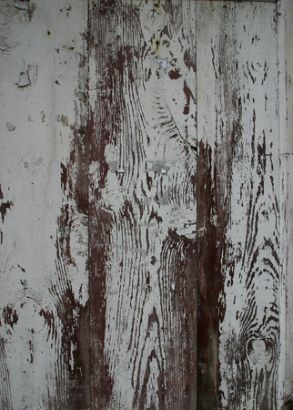 old wooden door: Surface of an old wooden door