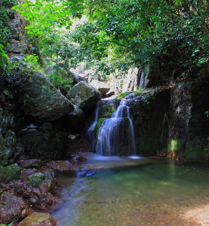 water stream: Waterfall and clear water stream