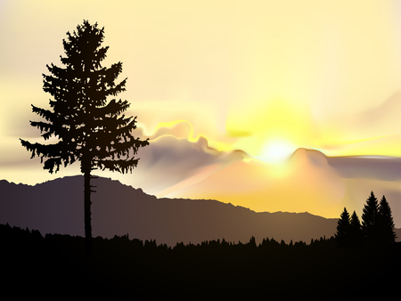 north american: Vector north american landscape. Silhouette of coniferous trees on the background of mountains and colorful sky. Sunset.
