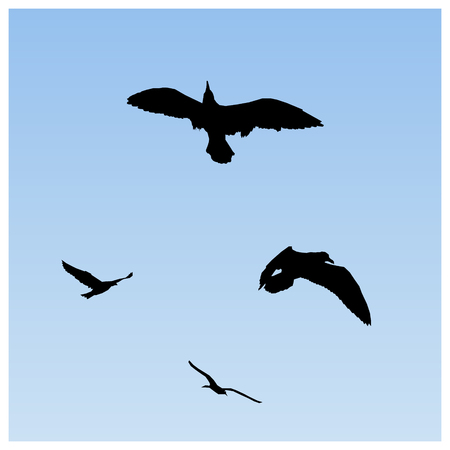 Image background. Silhouette of flying birds (gulls). Blue sky. Illustration