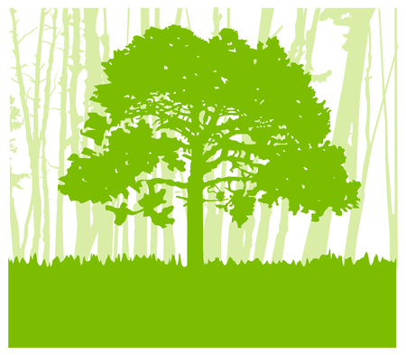Woodland eco . Can be used as poster, badge, wallpaper, backdrop, background, icon, sign.