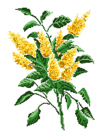 Color bouquet of flowers (yellow bloom of lilacs) using traditional Ukrainian embroidery elements. Can be used as pixel-art. Illustration