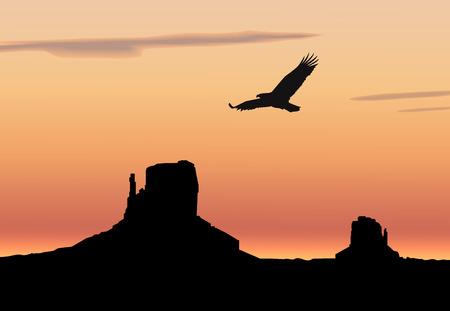 eagle canyon: Landscape background. Western desert. Rocks. Flying eagle. Colorful sky.