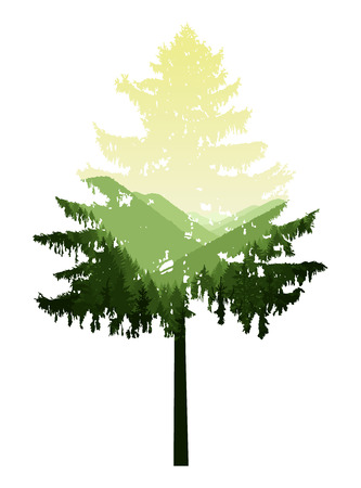 turismo ecologico: Natural silhouette of coniferous tree with panorama of mountains. Green and yellow tones.