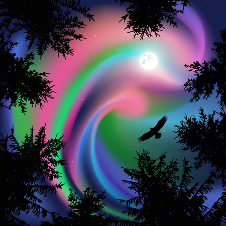 Silhouette of coniferous trees on the background of colorful sky. Flying eagle in the sky. Northern lights.   View from below. Illustration