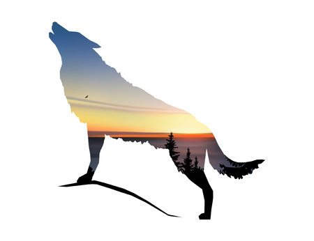 Silhouette of howling wolf with coniferous trees, sea horizon and colorful sky. Illustration