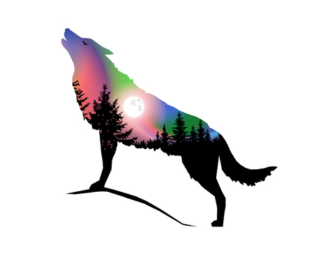 Silhouette of howling wolf with coniferous trees on the background of colorful sky. Moonlight. Northern lights.