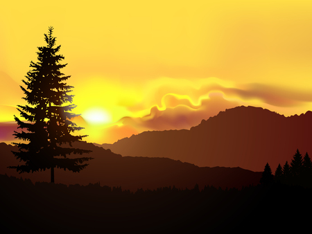 North american landscape. Silhouette of coniferous trees on the background of mountains and golden sky. Sunset.