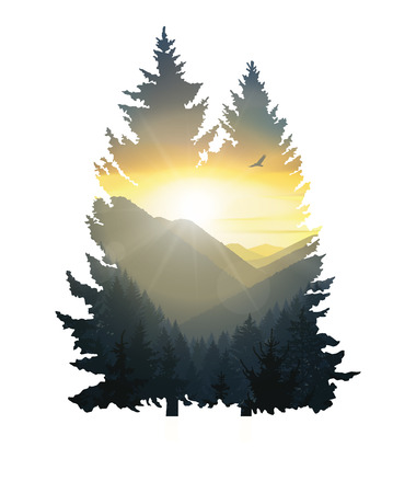 Silhouette of pine trees with mountains panorama. Colorful sunset in wild valley.